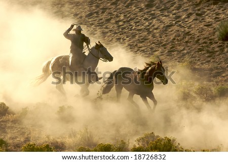 Cowboy galloping and roping wild horses through the desert - stock photo