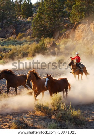 Cowboy riding his horse, roiing and riding - stock photo