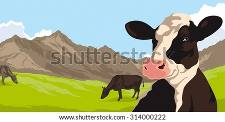 Cows on a background of nature and mountain - stock photo