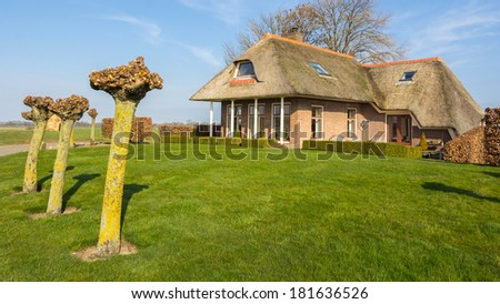 Cozy cottage with a thatched roof on a dike near the the water in Holland - stock photo