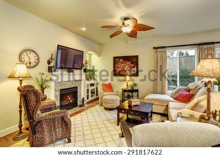 Cozy living room with decor, fire place, and rug.