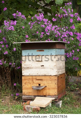 Cozy Old Colorful Beehive in the Garden and Aster Amellus Flowers Background in Autunm. - stock photo