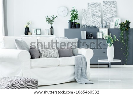 Cozy Relaxing Space In A Monochromatic Living Room Interior With Plants Gray Dresser And White