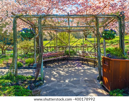 Cozy sitting area in the spring garden covered with blooming cherry trees - stock photo