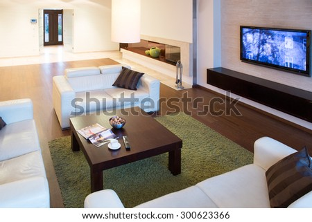 Cozy sitting room interior in modern style - stock photo