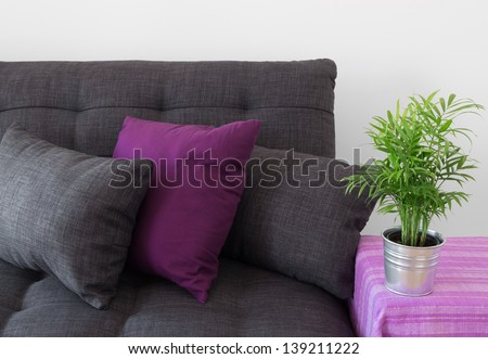 Cozy sofa decorated with cushions, and green plant in metal pot. - stock photo