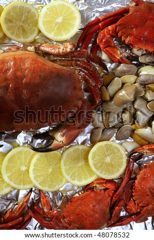 Crabs tellin clams and lemon seafood still life - stock photo