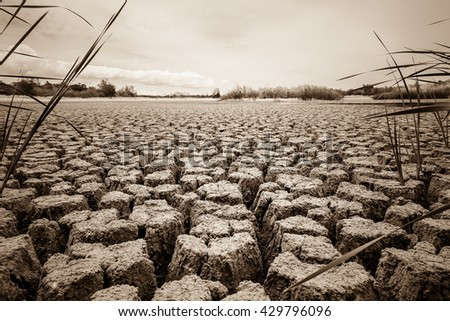 crack earth - stock photo