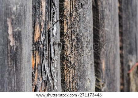cracked aged weathered wooden boards, selective focus - stock photo