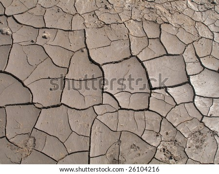 cracked dried ground - stock photo