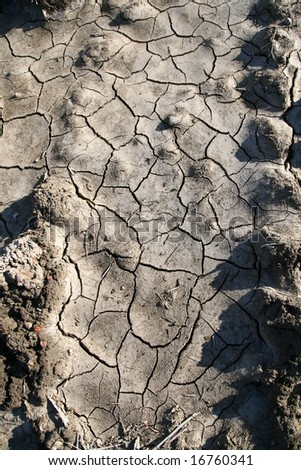 Cracked earth background disaster texture - stock photo