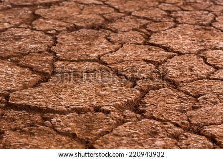 Cracked land texture