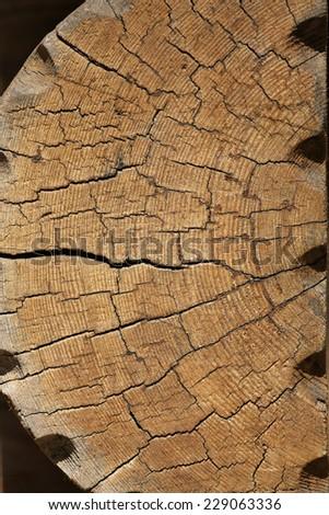 Cracked log texture. Pine tree - stock photo