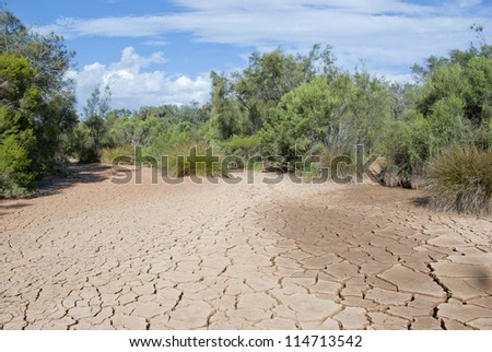Cracked mud tiles in dry river bed. Hutt River, Western Australia - stock photo