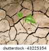Cracked, parched land after a drought - stock photo