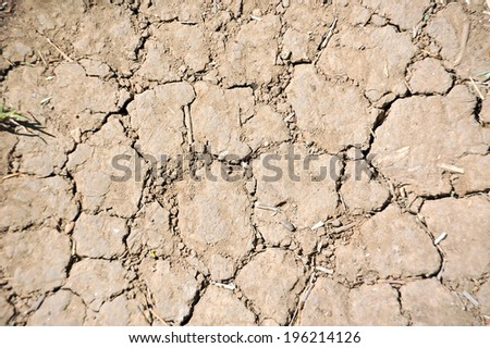 Cracked soil after drought texture background, close up - stock photo