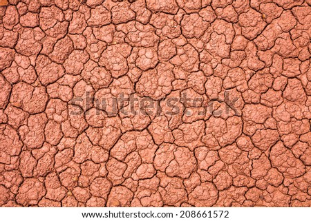 Cracked soil background - stock photo