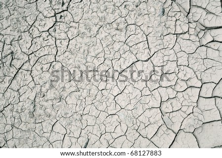 cracked soil background - stock photo