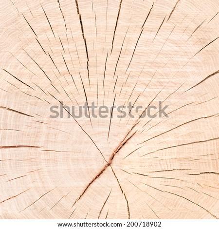 Cracked Wooden Background - stock photo