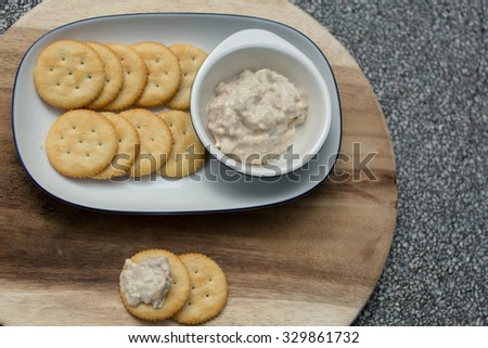 Crackers with assorted dips including cream cheese and chives, tuna spread,cheddar cheese - stock photo