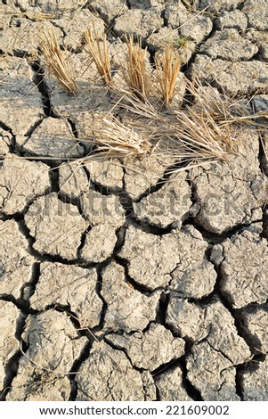 Cracks in the land in rural areas,clay desert texture