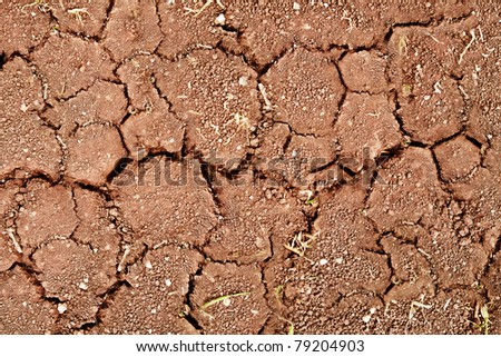 Cracks on dry surface of ground - stock photo