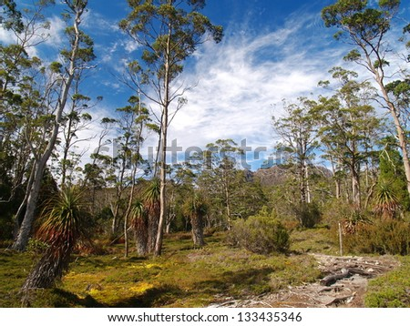Cradle Mountain - Lake St Clair National Park - stock photo