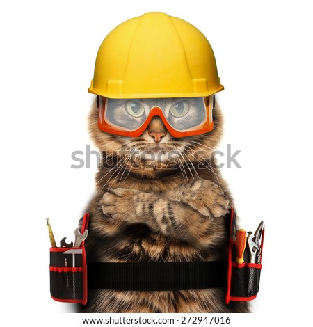 craftsman cat on a white background - stock photo