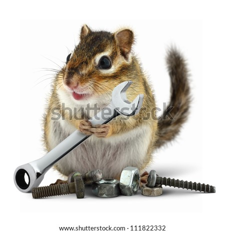 craftsman chipmunk with wrench on white - stock photo