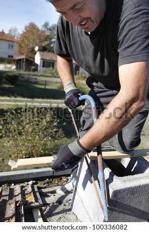 craftsman cutting a board - stock photo