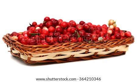 Cranberries. Berries in wicker basket isolated on white background. - stock photo