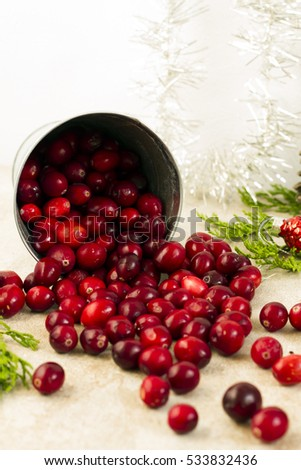 Cranberries in small, silver bucket. Christmas decoration. White background.