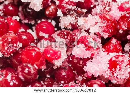 cranberries in sugar sweet healthy from the woods - stock photo