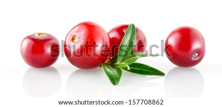 Cranberry - stock photo