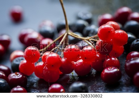 Cranberry, cranberries, cranberry and chokeberry on a dark stone wet background, selective focus and shallow depth of field, macro shot - stock photo