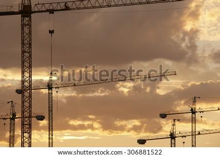 Cranes at dusk in warm tone. Horizontal - stock photo