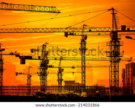 Cranes on a sunset background - stock photo