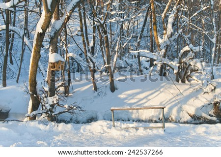 cratch and bench in forest on sunny day, Russia - stock photo
