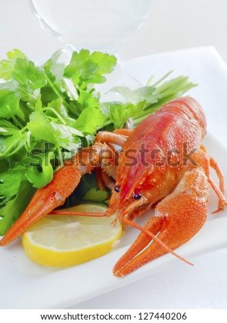crawfish - stock photo