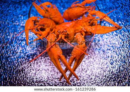 Crawfishes. Macro shoot with a little of DOF. - stock photo