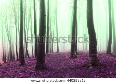 Crazy colors in other worldly foggy forest - stock photo