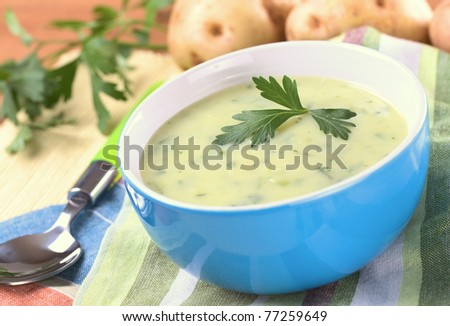 Cream of potato with herbs and green onions garnished with parsley and served in a blue bowl with potatoes and parsley in the back (Selective Focus, Focus on the front of the parsley) - stock photo
