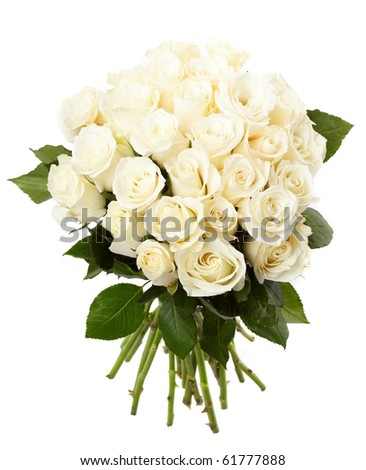 Cream roses - stock photo