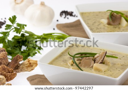 creamy mushroom soup with potatoes  garlic and herbs in white bowl - stock photo