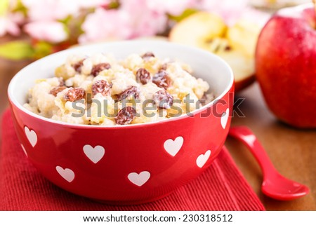 creamy rice pudding with cinnamon, apple pieces and raisins - stock photo