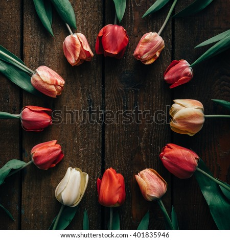 Creative arrangement of tulips on dark wooden background. Flat lay. - stock photo