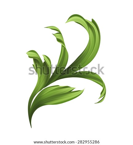creative artistic foliage, illustration of green grass and curly leaves isolated on white background - stock photo