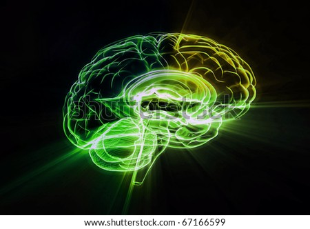 Creative brain colors - stock photo