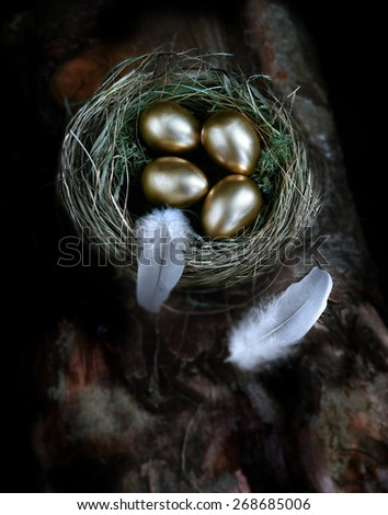 Creatively lit aerial concept image for pension investments and financial planning. Gold eggs nestled in a real birds nest resting on dark wood against a dark background. Copy space. - stock photo