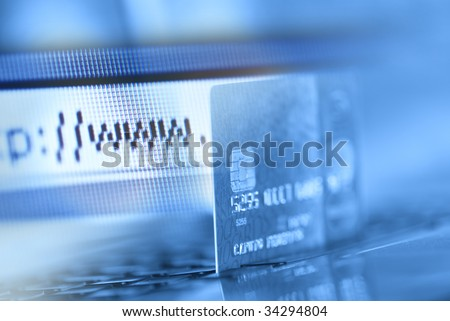 Credit card and internet browser - stock photo